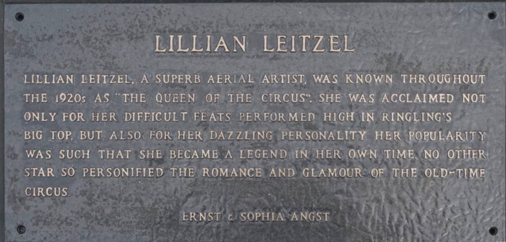 "Lillian Leitzel From Wikipedia, the free encyclopedia Jump to navigationJump to search Lillian Leitzel LillianLeitzel-1931.jpg Lillian Leitzel in 1931 Born Leopoldina Alitza Pelikan January 2, 1892 Breslau, Germany (present-day Wrocław, Poland Died February 15, 1931 (aged 39) Copenhagen, Denmark Known for Trapeze Acrobatics Lillian Leitzel (January 2, 1892, Breslau, Germany (present-day Wrocław, Poland) – February 15, 1931, Copenhagen, Denmark) was an acrobat and strongwoman for the Ringling Brothers and Barnum and Bailey Circus. The inaugural (posthumous) inductee to the International Circus Hall of Fame, Leitzel died in hospital two days after a fall during a live performance.[1] Contents 1 Early life 2 Act and personality 3 Marriages 4 Accident and death 5 Honors 6 In media 7 References 8 External links Early life[edit] Leitzel was born as Leopoldina Alitza Pelikan in a family of circus performers. Her father was most likely Willy Dosta, an itinerant circus performer; another possible candidate was Edward J. Eleanore, a Hungarian army officer and theater performer. Her mother, Nellie Pelikan, was a Czech circus acrobat. Her brother, Arthur Pelikan, later became director of the Milwaukee Art Institute.[2] She spent her childhood in Germany where she lived with her maternal grandparents.[3] Although she had been well-educated and had prepared to pursue a career as a concert pianist, she joined her mother's aerobatic circus group, the Leamy Ladies. The troupe was completed by her aunts Tina and Toni and Lily Simpson and they toured Europe in 1905.[4] ""The Leamy Ladies (Lillian Leitzel at left) in 1905. In 1910, she came to the United States with the circus troupe and performed with Barnum and Bailey. The group later dissolved and its members returned to Europe, but Leitzel continued to attempt to perform in the American vaudeville circuit. In South Bend, Indiana, she was seen by an agent of the Ringling Brothers who offered her a contract. When Ringling and Barnum and Bailey merged, she became a huge star and a headline performer for the circus.[5] Act and personality[edit] Leitzel performing in 1925 Leitzel's act included one-armed planges, momentarily dislocating the shoulder during each plange. She would flip her body over her shoulder repeatedly, sometimes hundreds of times in a feat of endurance, encouraging the audience to count each one in unison. Only four feet, nine inches, she was also famous for her demanding personality and temper. Leitzel was the first performer in history to command her own private Pullman car completely furnished with her own baby grand piano.[6] Her quick temper was legendary. It was not uncommon to witness Leitzel cursing or slapping a roustabout who did not adjust her rigging exactly to her liking. Further, Leitzel was known to fly off the handle and fire and rehire her personal maid, Mabel Cummings, several times a day. In sharp contrast, she was known to the children on the show as ""Auntie Leitzel"", and who would hold birthday parties for her fellow performers in her private dressing tent.[7] Marriages[edit] The identity of her first husband is unknown. She married Clyde Ingalls in 1920, and the couple divorced in 1924. Her third husband was circus trapeze performer Alfredo Codona, whom she wed in 1928. Accident and death[edit] On February 13, 1931, she fell to the ground from her rigging while performing in Copenhagen, Denmark at the Valencia Music Hall, when the swivel that held the rope in place fractured and snapped. She and Codona had been performing in Europe separately, and he rushed to Copenhagen. After she apparently showed signs of improvement, Codona returned to his company in Berlin. However, she died on February 15, two days after the fall, aged 39.[1] She was buried in Inglewood Park Cemetery in Inglewood, California.[8] Honors[edit] Lillian Leitzel was the first inductee elected into the International Circus Hall of Fame in 1958.[9] A vintage circus poster depicting her was used as the subject of a United States postage stamp issued as part of a set on May 5, 2014.[10] In media[edit] The book Queen of the Air: A True Story of Love and Tragedy at the Circus by Dean N. Jensen, is about Lillian Leitzel. It was published by Crown in 2013 (ISBN 030798656X/ISBN 978-0307986566). References[edit] ^ Jump up to: a b ""Circus Fall Fatal To Lillian Leitzel. Famous Circus Star Dead From Fall"". New York Times. February 16, 1931. ^ Dean Jensen, Queen of the Aur ^ ""Trivia on Biography of Queen of the Circus Lillian Leitzel Part 1"". trivia-library.com. Retrieved 2012-01-03. ^ ""Lillian Leitzel, The High-Flying 'Queen' Of The Circus"". NPR.org. Retrieved 2019-01-02. ^ Masek, Mark. ""Grave Spotlight - Lillian Leitzel"". www.cemeteryguide.com. Retrieved 30 March 2013. ^ Eckley, Wilton. The American Circus. Boston: Twayne Publishers, 1984. ^ Willson, Dixie. ""Under the Big Top"", Good Housekeeping, June–October 1931. ^ Lillian Leitzel profile, cemeteryguide.com; accessed December 5, 2016. ^ ""International Circus Hall of Fame"". International Circus Hall of Fame. Retrieved 2008-08-04. ^ Sheehan, Brian (2014-05-05). ""USPS Issues Vintage Circus Posters Forever Stamps"". PRNewswire. Postal News Blog. Retrieved 2016-09-29. External links[edit] Wikimedia Commons has media related to Lillian Leitzel. Lillian Leitzel's biography at the official Ringling Bros. website Collection of informational articles about Lillian Leitzel's career and life Biography of Queen of the Circus Lillian Leitzel, part 1 at Trivia Library Bio, part 2 at Trivia Library Bio, part 3 at Trivia Library CemeteryGuide.com website"